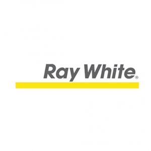 Corporate headshot customers RAYWHITE